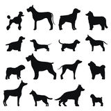 Dog Breed Vector Black Silhouette Royalty Free Stock Photography