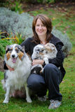 Dog breeder with Australian Shepherd adult female dog and her puppies in arms Royalty Free Stock Image