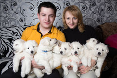 Dog breeders Stock Image