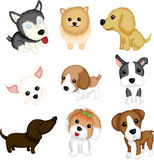 Dog breeds. A vector illustration of different dog breeds stock illustration