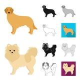 Dog breeds cartoon,black,flat,monochrome,outline icons in set collection for design.Dog pet vector symbol stock web. Dog breeds cartoon,black,flat,monochrome Royalty Free Stock Images
