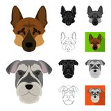 Dog breeds cartoon,black,flat,monochrome,outline icons in set collection for design.Muzzle of a dog vector symbol stock. Illustration Royalty Free Stock Photos