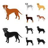 Dog breeds cartoon,black icons in set collection for design.Dog pet vector symbol stock web illustration. Dog breeds cartoon,black icons in set collection for Stock Photo