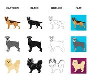 Dog breeds cartoon,black,outline,flat icons in set collection for design.Dog pet vector symbol stock web illustration. Dog breeds cartoon,black,outline,flat Stock Photos