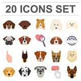 Dog breeds cartoon icons in set collection for design.Muzzle of a dog vector symbol stock web illustration. Dog breeds cartoon icons in set collection for Stock Photography