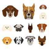 Dog breeds cartoon icons in set collection for design.Muzzle of a dog vector symbol stock web illustration. Dog breeds cartoon icons in set collection for Royalty Free Stock Images