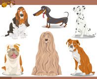 Dog breeds cartoon illustration set Stock Photo