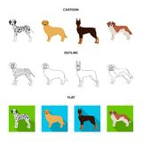 Dog breeds cartoon,outline,flat icons in set collection for design.Dog pet vector symbol stock web illustration. Dog breeds cartoon,outline,flat icons in set Stock Photos
