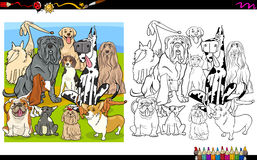 Dog breeds coloring page Stock Photo