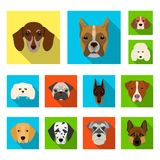 Dog breeds flat icons in set collection for design.Muzzle of a dog vector symbol stock web illustration. Dog breeds flat icons in set collection for design Stock Photo