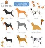 Dog breeds. Hunting dog set icon. Flat style Stock Images