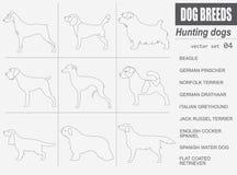 Dog breeds. Hunting dog set icon. Flat style Stock Photos
