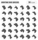 Dog breeds. Hunting dog set icon. Flat style Stock Photography