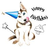 The dog breeds husky. Cute puppy with blue eyes. Birthday. Isolated on white background. stock illustration
