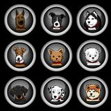 Dog breeds icons Royalty Free Stock Photography