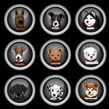 Dog breeds icons Royalty Free Stock Photography