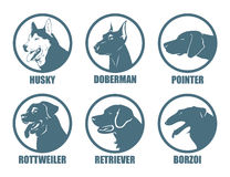 Dog breeds labels Stock Photography
