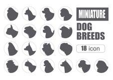 Dog breeds. Miniature toy dog set icon. Flat style Stock Photo
