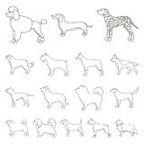 Dog breeds outline icons in set collection for design.Dog pet vector symbol stock web illustration. Dog breeds outline icons in set collection for design.Dog Royalty Free Stock Photos