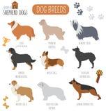 Dog breeds. Shepherd dog set icon. Flat style Stock Image