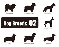 Dog breeds, standing on the ground, side,silhouette,vector Royalty Free Stock Images