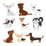Dog breeds vector cartoon set Royalty Free Stock Image