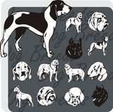 Dog Breeds - vector set Royalty Free Stock Photo