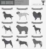 Dog breeds. Working (watching) dog set icon. Flat style Royalty Free Stock Photos