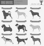 Dog breeds. Working (watching) dog set icon. Flat style Stock Photography