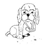 Dog with broken foot. Coloring illustration of a dog with broken foot Royalty Free Stock Image