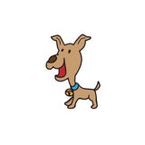 Dog brown Stock Images