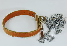 Dog brown leather collar and lead chain Stock Images