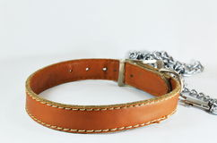 Dog brown leather collar and lead chain Stock Photo