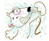 Dog Bull terrier shower Stock Images