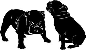 Dog Bulldog. The dog breed bulldog.Dog Bulldog black silhouette vector isolated on white background. Dog pug. Meeting two dogs of. A bulldog and a pug Royalty Free Stock Photo