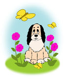 Dog and Butterflies Royalty Free Stock Images