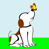 Dog With Butterfly On Nose. Cartoon dog sitting with a butterfly on nose Royalty Free Illustration