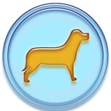 Dog button Stock Image