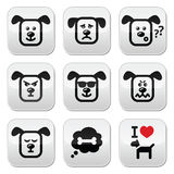 Dog buttons set - happy, sad, angry isolated on white Stock Photos