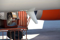 Dog in cage. Dog in a dog cage near the bottom of an aircraft fuselage Stock Photos