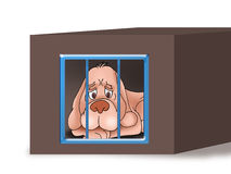 Dog in the cage Stock Photo