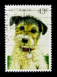 Dog (Canis lupus familiaris), Pets serie, circa 1991. MOSCOW, RUSSIA - MARCH 28, 2018: A stamp printed in Australia shows Dog (Canis lupus familiaris), Pets stock photo