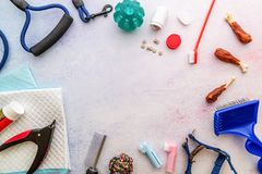 Dog caring tools: brushes, pills, nail clipper, leash, medicine, toilet pad, snacks and toys scattered on white background top. Pet care concept. Tools and stock images