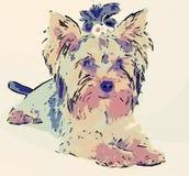 Dog cartoon Royalty Free Stock Photo