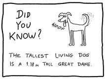 Dog cartoon Stock Image