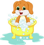 Dog cartoon bathing Stock Image