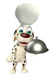 Dog cartoon characte with chef hat and cloche Royalty Free Stock Image