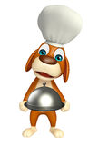 Dog cartoon characte with chef hat and cloche Stock Photos