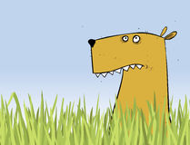 Dog Cartoon Character In The Grass. Stock Images