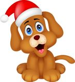 Dog cartoon with Christmas red hat Royalty Free Stock Images